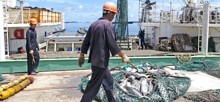 FIMS: Backbone of PNA's fishery